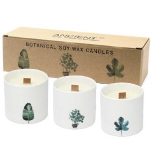 Large Botanical Candles - Marsh Viola