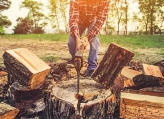 Best Axes for Splitting Wood