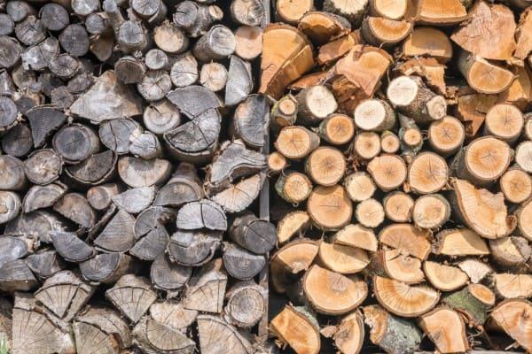 Green or Unseasoned Wood vs. Seasoned Wood