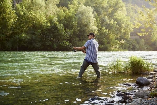 Best Baits for Trout