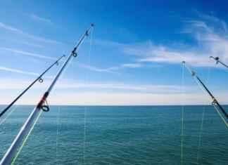 Deep Sea Fishing Tips