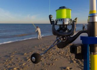 Best Baits for Surf Fishing