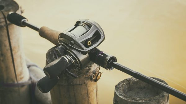 What to Look for in a Bass Fishing Reel