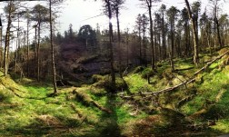 Exploring some trackless land in the Goyt, until I stopped here and had a few moments of non-existence!