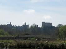 IMG_0817 castle