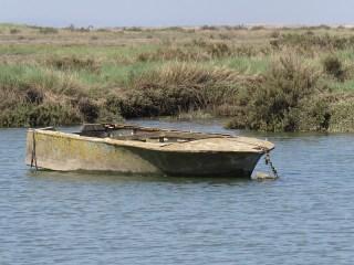 IMG_2938 boat