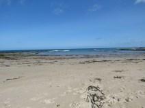 IMG_3971 bamborough beach
