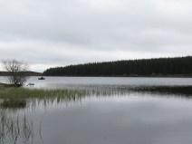 IMG_4246 Loch Tummel