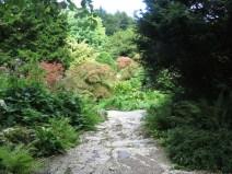 IMG_7620 Sizergh castle gardens