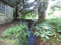 IMG_7637 Sizergh castle gardens