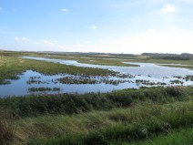 img_9328-cley