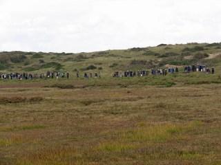 img_1134-burnham-overy-dunes