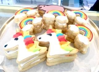 Rainbow's, Unicorns, and Baby Fiona