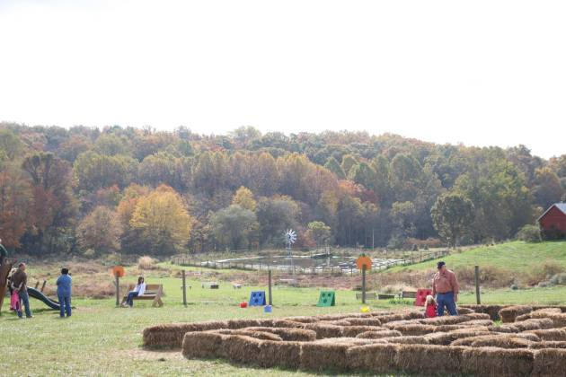 Fun Fall Activities To Try Nearby - East Coast Fall