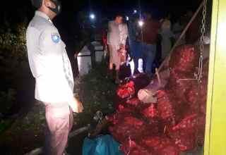 Truk pengangkut 3 ton salak pondoh Banjarnegara terguling di Purbalingga