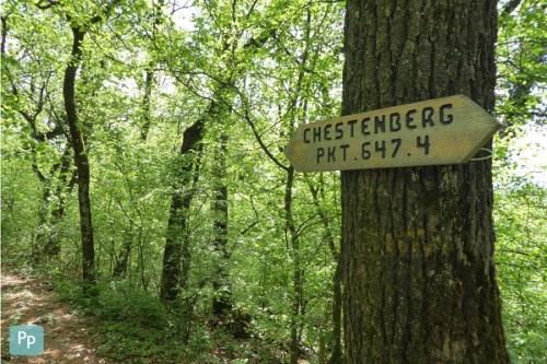 Chestenberg