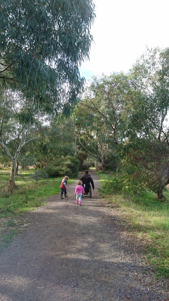 Onkaparinga River Rec Park path