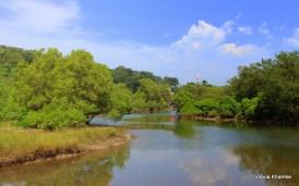Landscape near Anjanwel