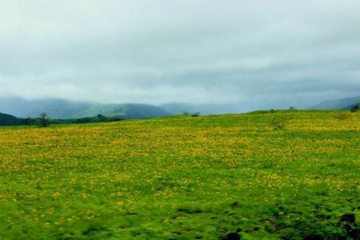 On the way to Kaas