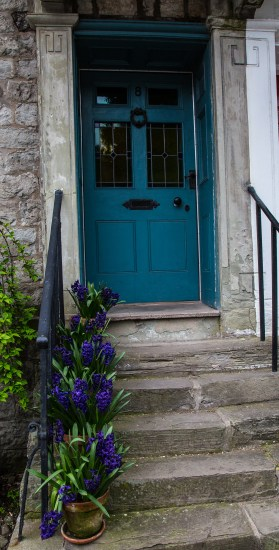 Hyacinth steps and blue door