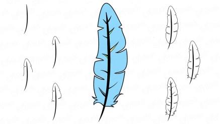 Как нарисовать перо птицы поэтапно