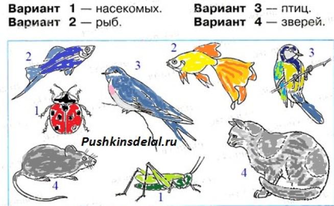 Как раскрасить только насекомых, птиц, рыб, зверей