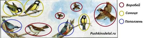 Посчитайте птиц на рисунке учебника (с. 92) синица воробей поползень