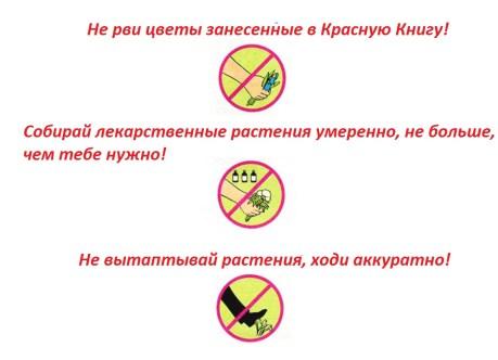 правила охраны растений