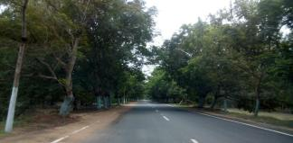 Balukhand Reserve Forest