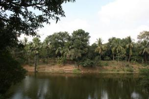 Narmada Pond at Naulakha Mandir