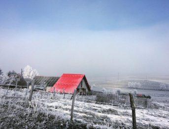 Emir Kusturica' nın plato köyü Mokragora' dan bir manzara