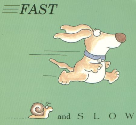 fast-and-slow-2