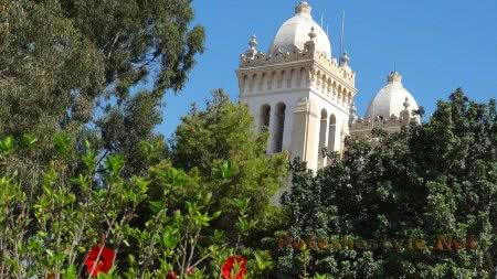 Szenvedve vertük Tunéziát a női kézilabda-vb-n | M4 Sport