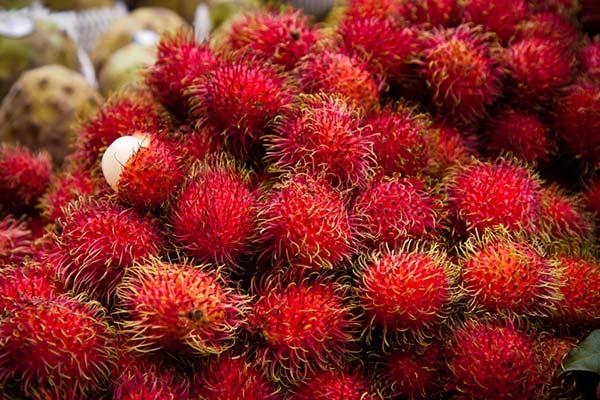Экзотические фрукты тайланда фото с названиями и описанием