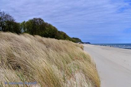 Foto-74-(114)-Wind-Wellen
