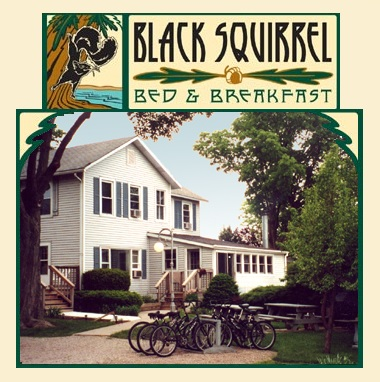 BlackSquirrel_logo