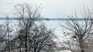 Ice Breaker Lake Erie