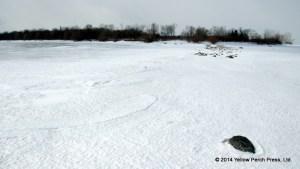 South Bass Island Ice
