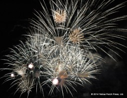 PiB Fireworks
