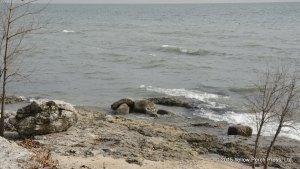 SBI shoreline