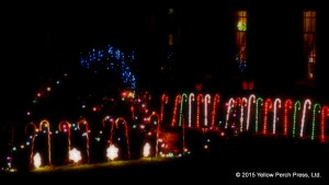 lights_xmas_12092015 (4)