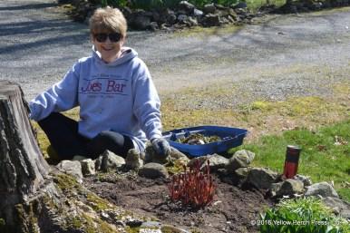 Gardening Put in Bay