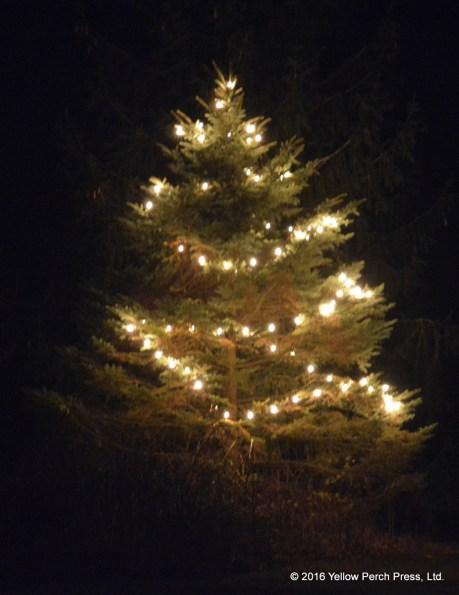 put-in-bay_xmas-tree