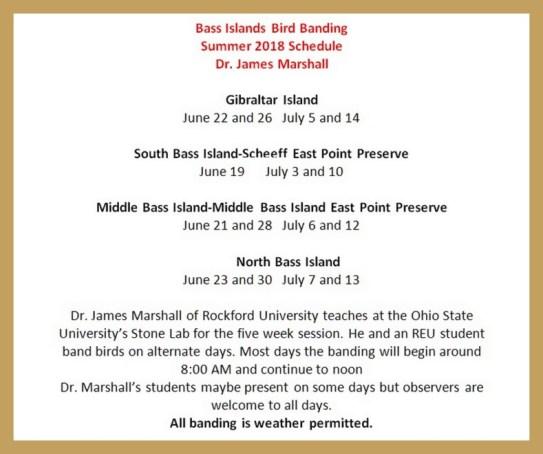Bird Banding Lake Erie
