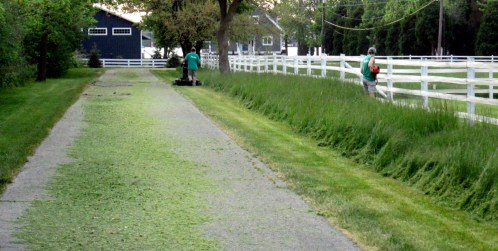 Put in Bay lawn mowing