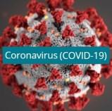 Put in Bay Corona Virus