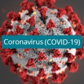 Put in Bay Corona Virus