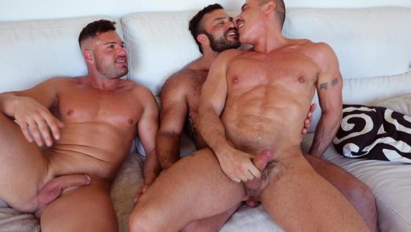 Gay muscle sex porn