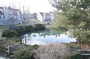 Guard Hill Manor pond