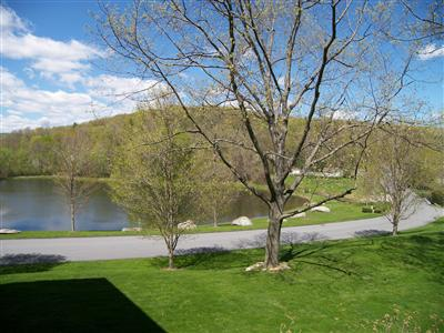 Homes For Sale The Willows Somers Ny